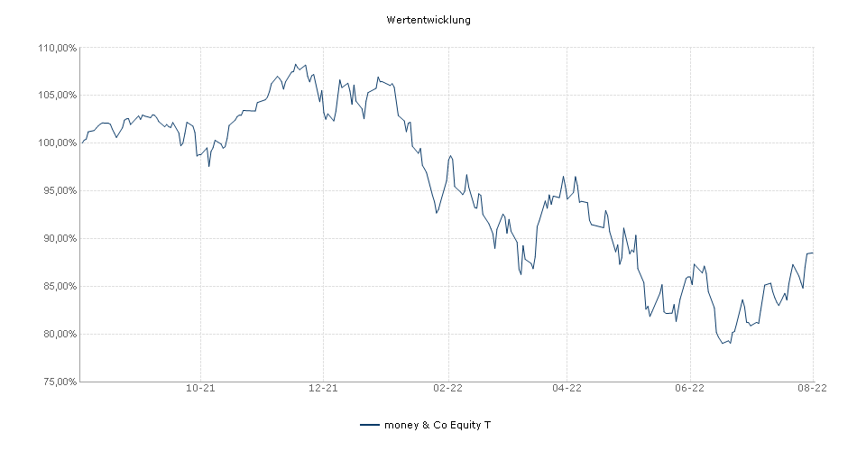 money & Co Equity T Fonds Performance
